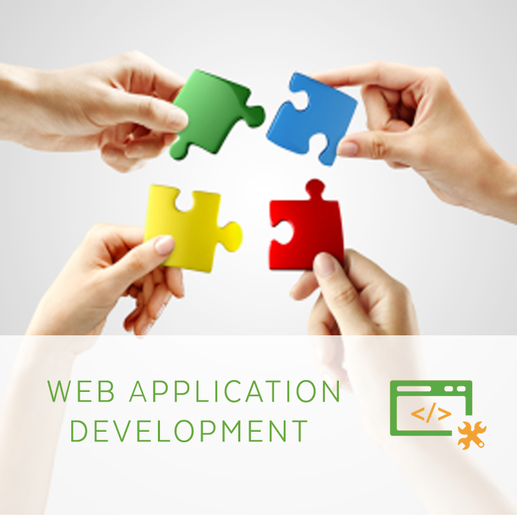 Web Application Development in Delhi