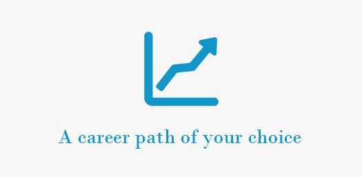 A career path of your choice
