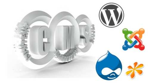 CMS Web Development Company in Jamnagar