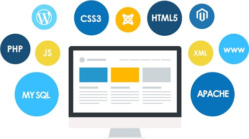 Website Development Company in Delhi, India