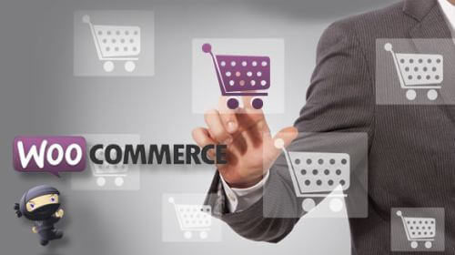 WooCommerce Website Development Company in Rohtash Nagar West