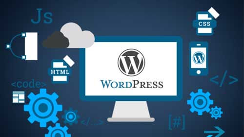 Wordpress Website Development Company in Modhera